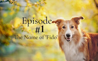 The Meaning of Fido